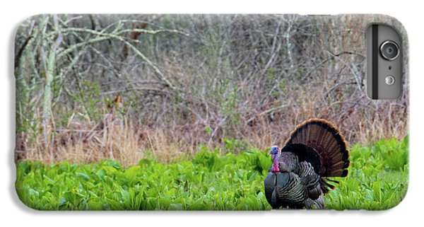 IPhone 7 Plus Case featuring the photograph Turkey And Cabbage by Bill Wakeley