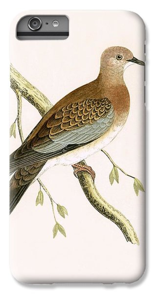 Turtle Dove IPhone 7 Plus Case by English School