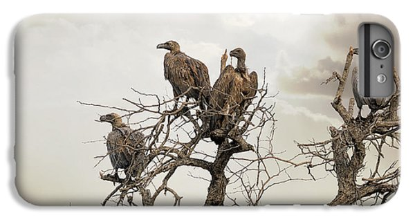 Vultures In A Dead Tree.  IPhone 7 Plus Case by Jane Rix