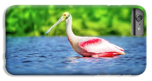Wading Spoonbill IPhone 7 Plus Case