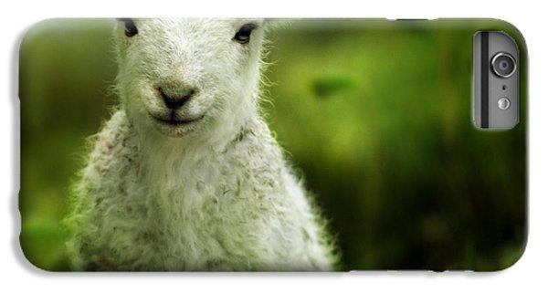 Sheep iPhone 7 Plus Case - Welsh Lamb by Angel Ciesniarska