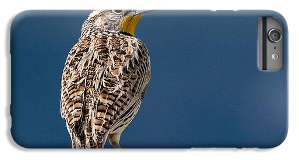 Meadowlark iPhone 7 Plus Case - Western Meadowlark by Dawn Key