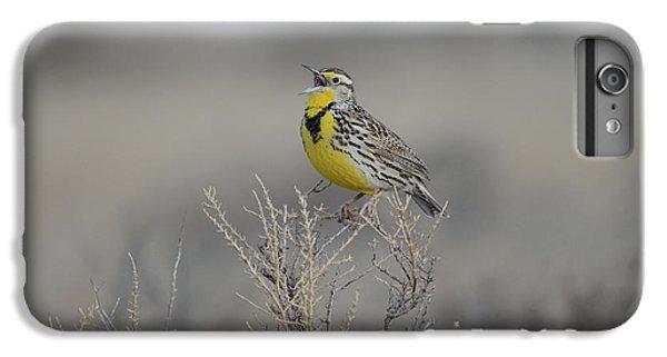 Meadowlark iPhone 7 Plus Case - Western Meadowlark by Whispering Peaks Photography