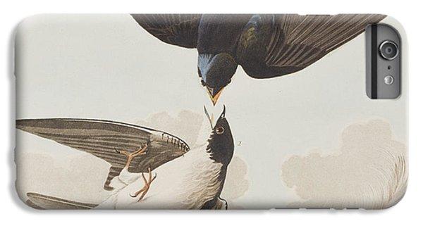 Swallow iPhone 7 Plus Case - White-bellied Swallow by John James Audubon