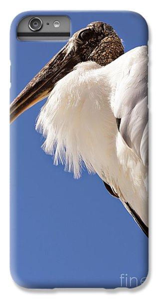 Wonderful Wood Stork IPhone 7 Plus Case by Carol Groenen