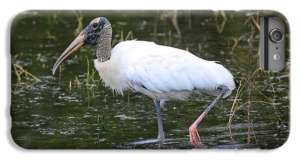 Wood Stork Through The Marsh IPhone 7 Plus Case