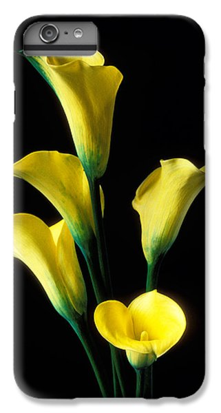 Lily iPhone 7 Plus Case - Yellow Calla Lilies  by Garry Gay