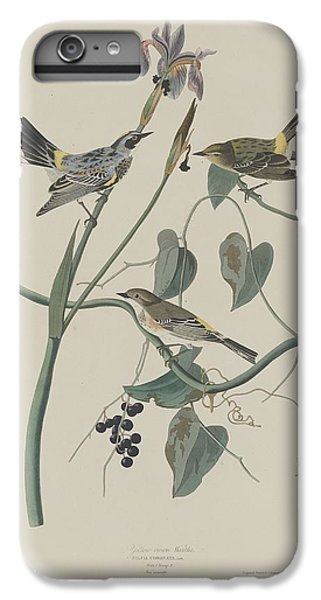 Yellow-crown Warbler IPhone 7 Plus Case by Dreyer Wildlife Print Collections
