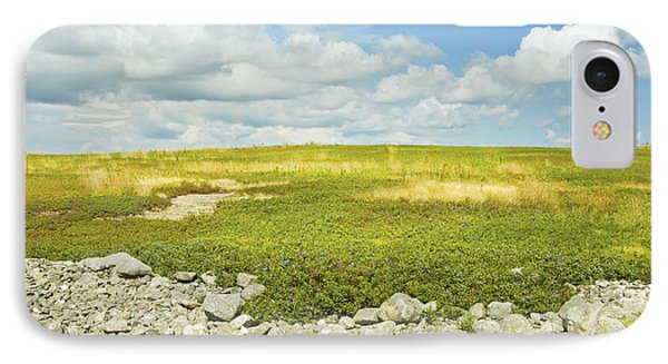 Blueberry Field With Blue Sky And Clouds In Maine IPhone Case