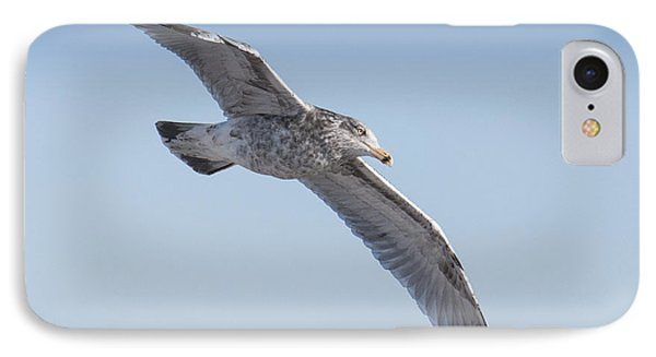 Gull Friend IPhone Case