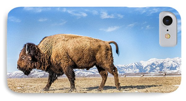 A Bison In The 24,700-acre National Elk IPhone Case