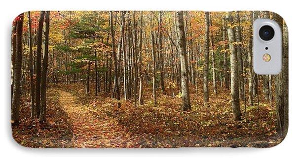 Autumn Fields IPhone Case