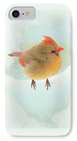 Baby Female Cardinal IPhone Case