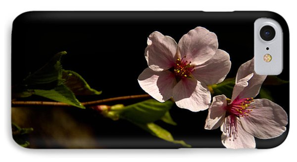 Blossoms  IPhone Case