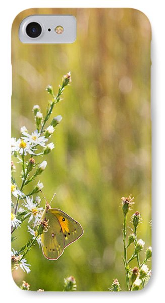 Butterfly In A Field Of Flowers IPhone Case
