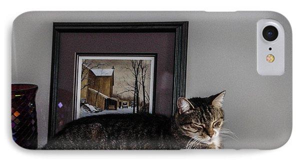 Cat At Rest IPhone Case