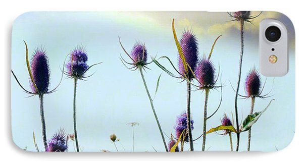 Dream Field Of Teasels IPhone Case