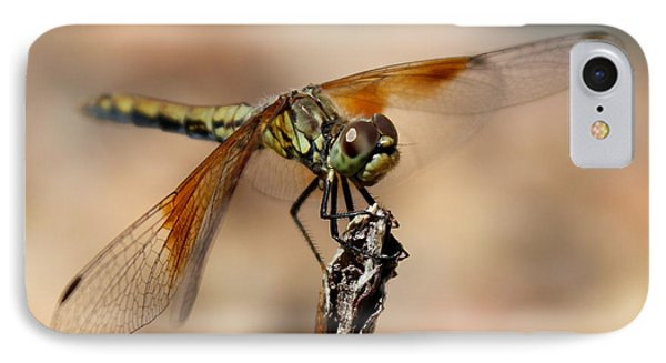 Green Dragonfly IPhone Case