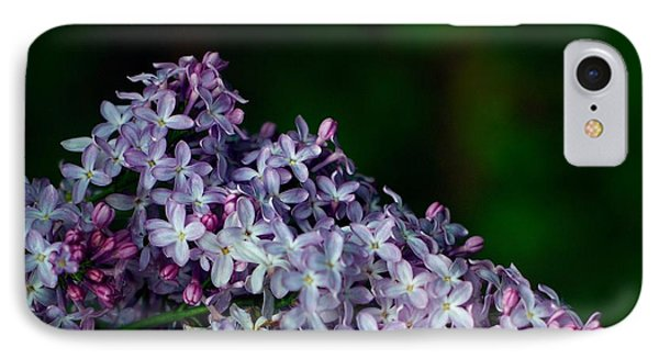 Lilac 4 IPhone Case