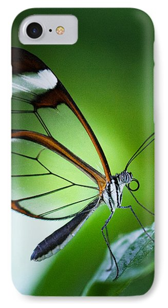 Macro Photograph Of A Glasswinged Butterfly IPhone Case