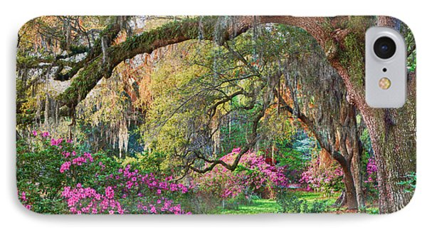Magnolia Plantation Azaleas IPhone Case