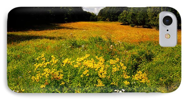 Meadow Filled With Yellow Flowers IPhone Case