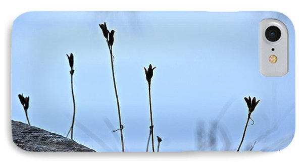 Pods On Pond IPhone Case