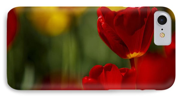 Tulip iPhone 8 Case - Red And Yellow Tulips by Nailia Schwarz