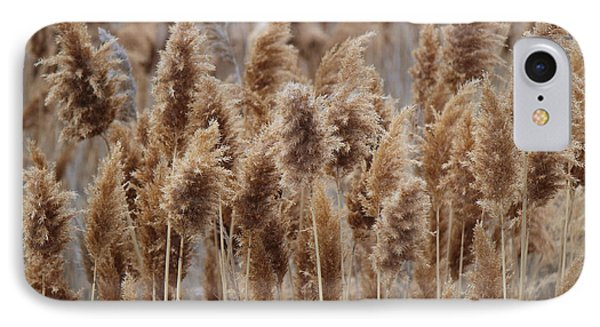 Wind Blown Redish Brown Plants IPhone Case