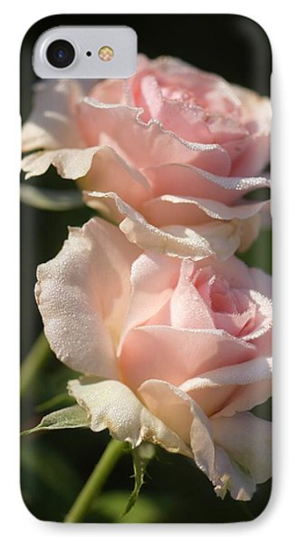 Rosa 'johann Strauss' Flowers IPhone Case