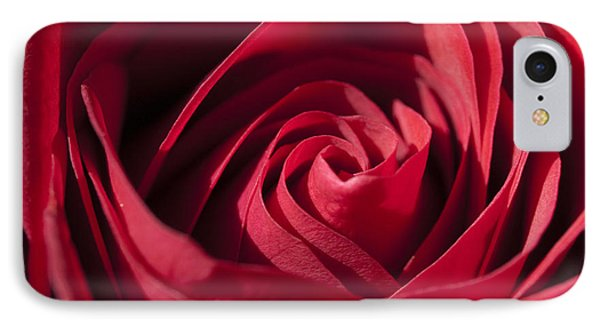 Rose Red IPhone Case