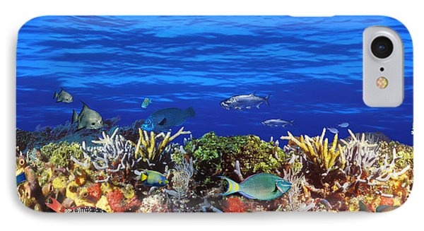 School Of Fish Swimming Near A Reef IPhone Case