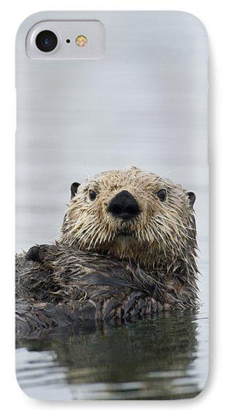 Sea Otter Alaska IPhone Case