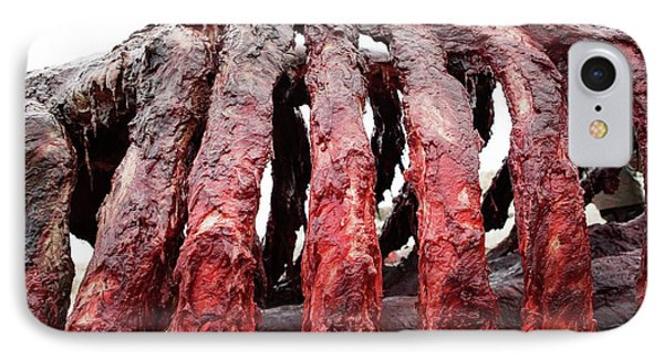Sperm Whale Carcass IPhone Case