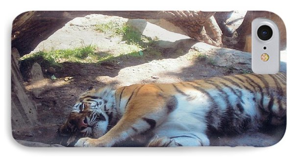Tiger At Rest IPhone Case