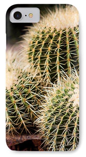Triple Cactus IPhone Case
