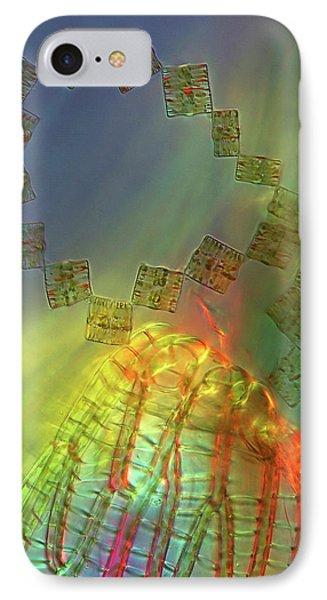 Diatoms IPhone Case