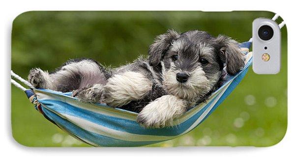 Schnauzer Puppy Dog IPhone Case