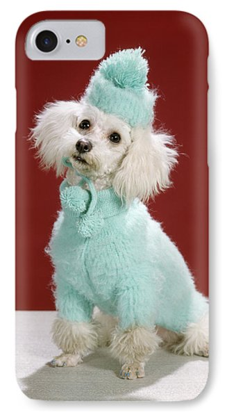 Knit Hat iPhone 8 Case - 1970s White Poodle Wearing Blue Sweater by Animal Images