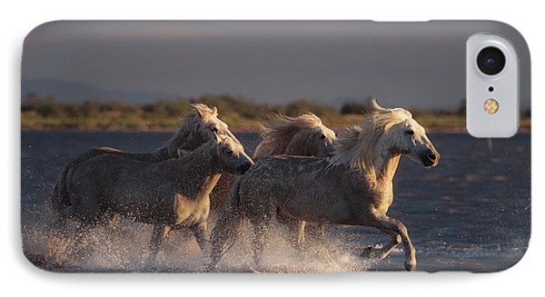 French iPhone 8 Case - Angels Of Camargue by Rostovskiy Anton