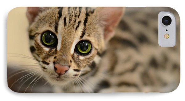 Cat iPhone 8 Case - Asian Leopard Cub by Laura Fasulo