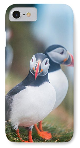 Atlantic Puffins Fratercula Arctica IPhone Case