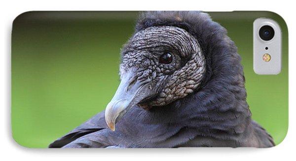Black Vulture Portrait IPhone Case