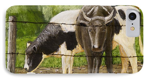 Bull And Cow Spring Farm Field  IPhone Case