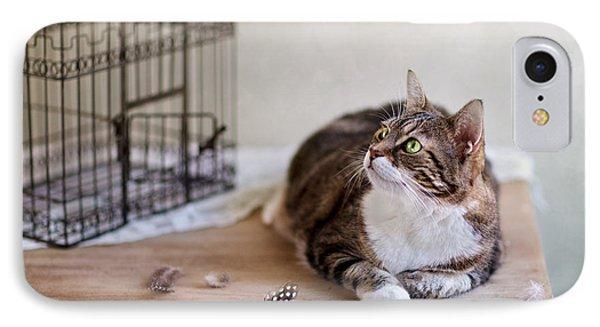 Cat And Bird Cage IPhone Case