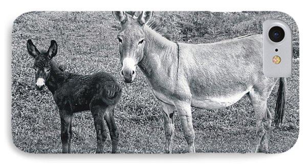 Donkey Debut IPhone Case