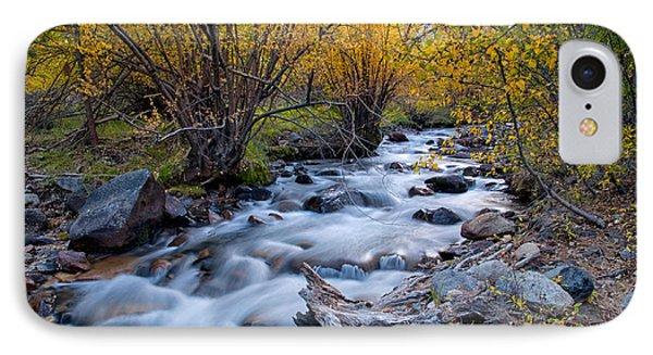 Fall At Big Pine Creek IPhone Case
