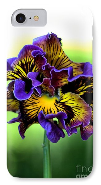 Frilly Pansy IPhone Case
