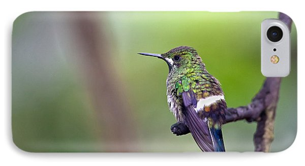 Green Thorntail IPhone Case