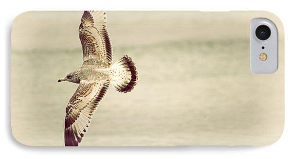 Herring Gull In Flight IPhone Case